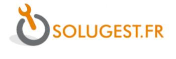 Logo Solugest.fr